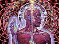 """Tool """"Lateralus"""""""