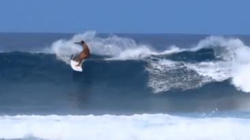 Mini Simmons Spotting Maui