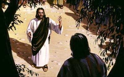 Encontros com Jesus: Um Encontro de Salvação
