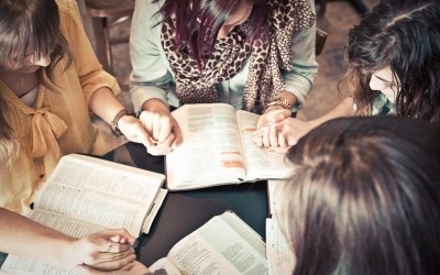 Ministérios Femininos: Discipulando o Cristão