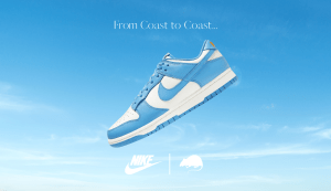 Copy of Dunk Coast Blue