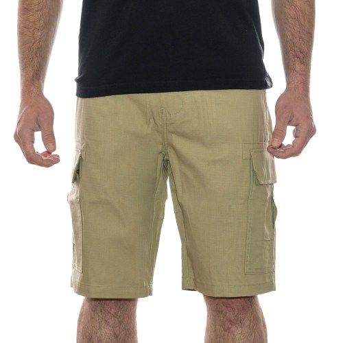 dickies short_15