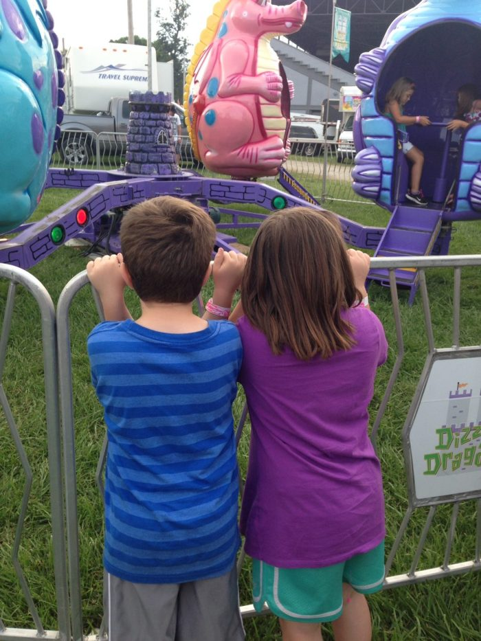 2014 County Fair | Mini Van Dreams #lifewithtwins #familymemories