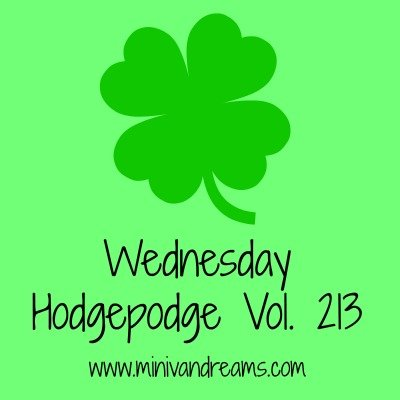 Wednesday Hodgepodge Vol. 213 | Mini Van Dreams
