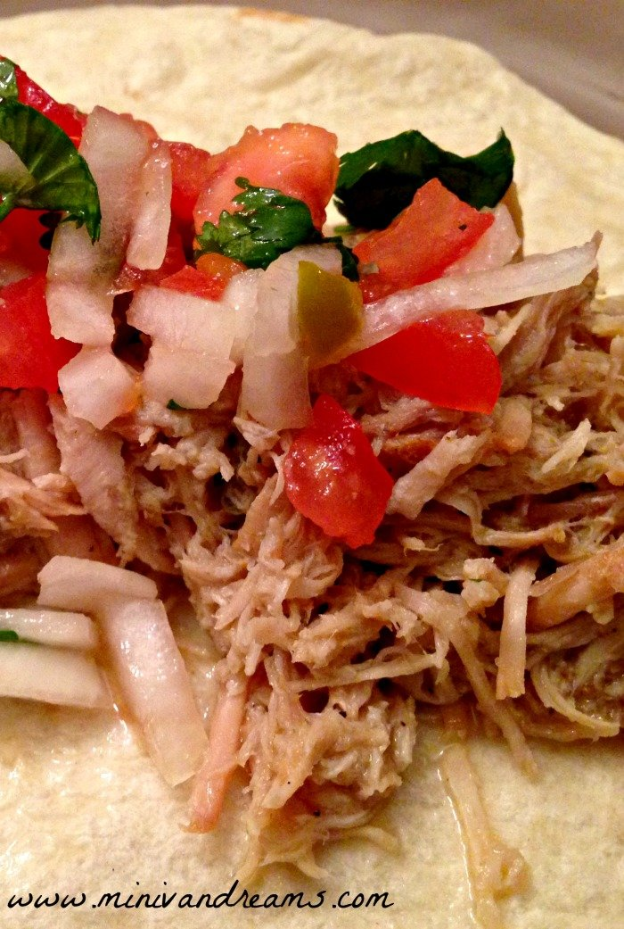 Carnitas with a Twist | Mini Van Dreams