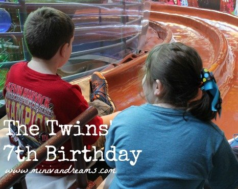 The Twins' 7th Birthday   Mini Van Dreams