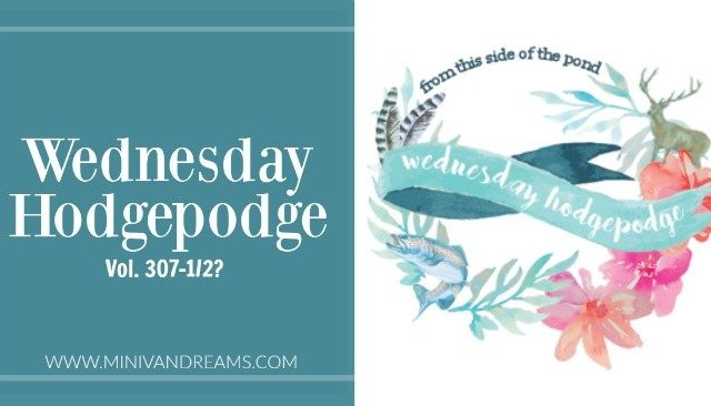 Wednesday Hodgepodge Vol. 307-1/2? | Mini Van Dreams