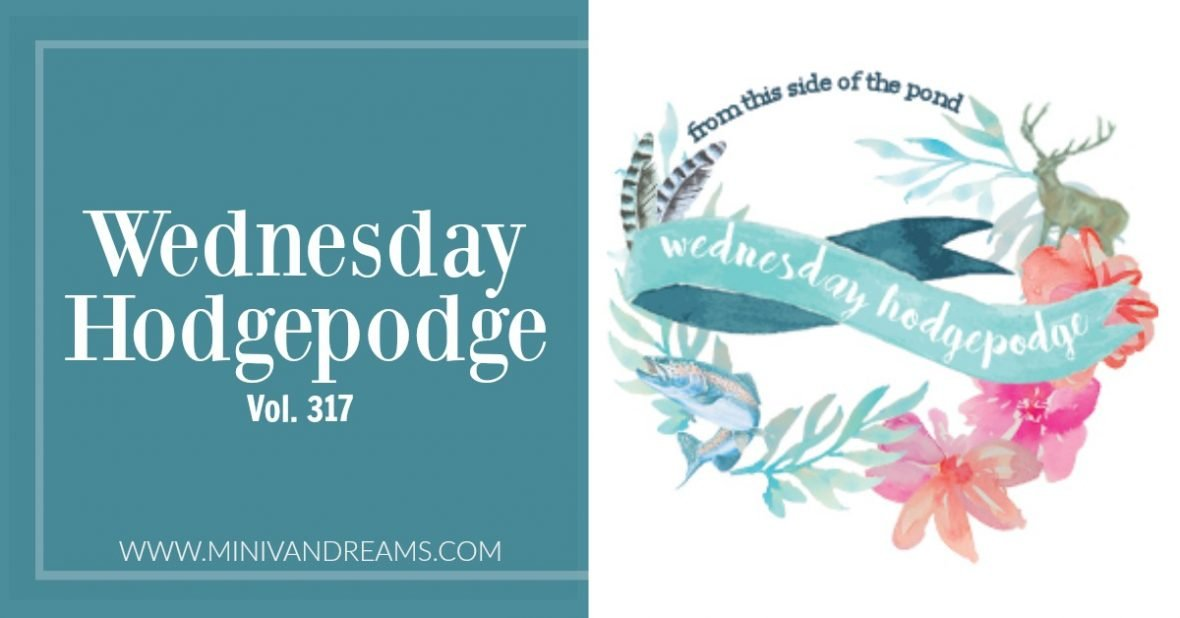 Wednesday Hodgepodge Vol. 317