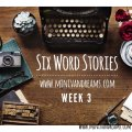 Six Word Stories: Week 3 Recap | Mini Van Dreams