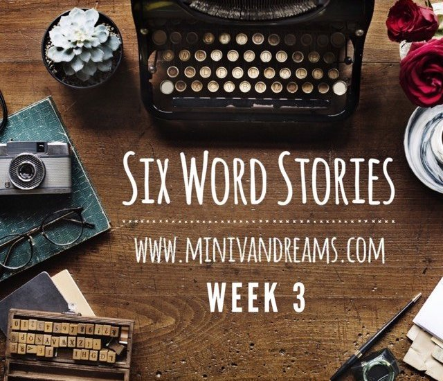 Six Word Stories: Week 3 Recap | Mini Van Dreams