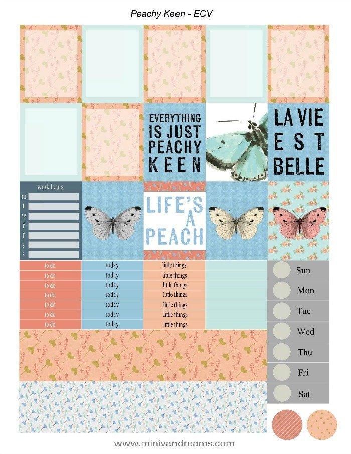 Free Printable Planner Stickers: Peachy Keen | Mini Van Dreams