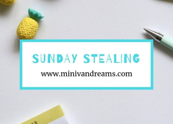 Sunday Stealing: January 20, 2019 | Mini Van Dreams