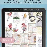 Winter Berries Free Printable Planner Stickers