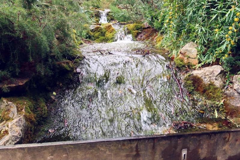 National Botanic Gardens Dublin @minkaguides stream