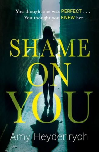 Summer reading 2018 @minkaguides Shame On You by Amy Heydenrych