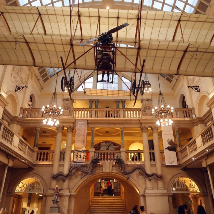 Things to do in Bristol - Bristol Museum _ Art Gallery plane CREDIT_ © Minka Guides