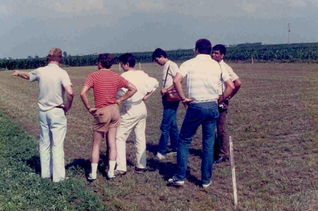men in field photo