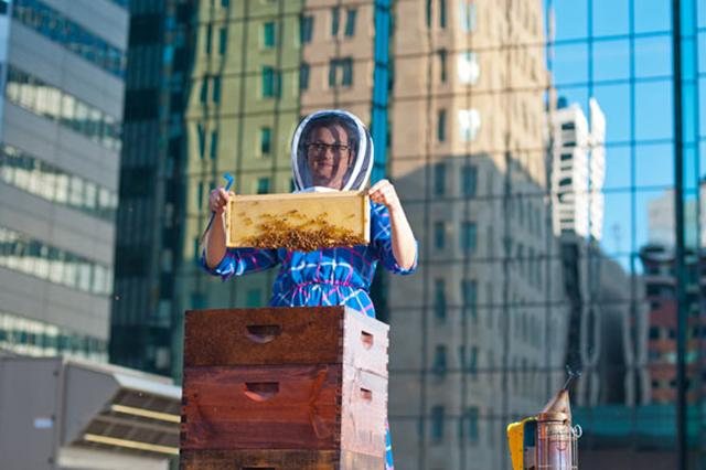 susan brown with bees