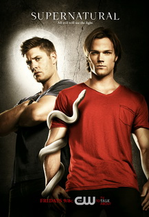 Supernatural Season 06