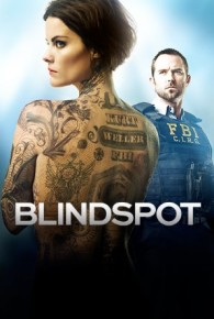 Blindspot Season 01