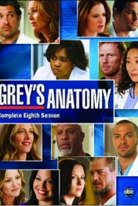Watch Grey's Anatomy Season 08 Full Movie Streaming Online Free