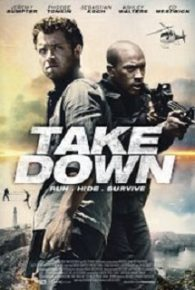 Billionaire Ransom / Take Down (2016)