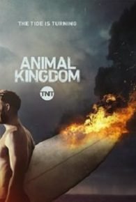 Animal Kingdom Season 02 Full Episodes Online Free