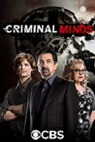 Criminal Minds Season 13 Full Episodes Online Free