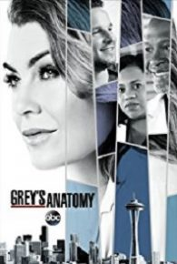 Grey's Anatomy Season 14 Full Episodes Online Free
