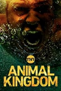 Animal Kingdom Season 04 Watch Full Episodes Online Free