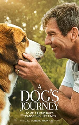 Watch A Dog's Journey Online Free