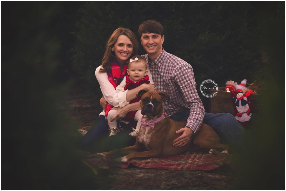 Mint Portrait Studio Family Photographer Carmel Brooks