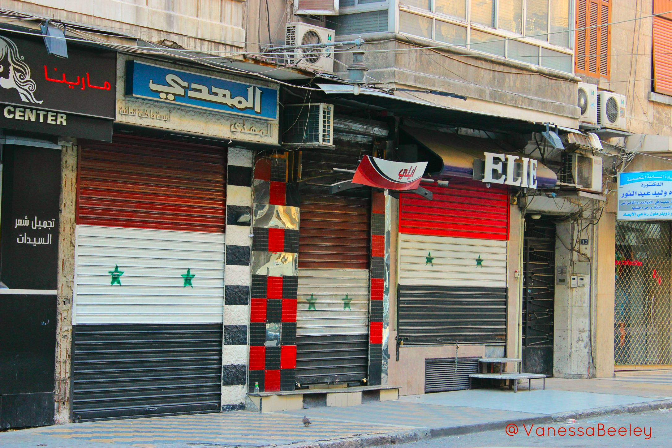 The Syrian flag painted in proud defiance onto storefront shutters in western Aleppo. (Photo: Vanessa Beeley)