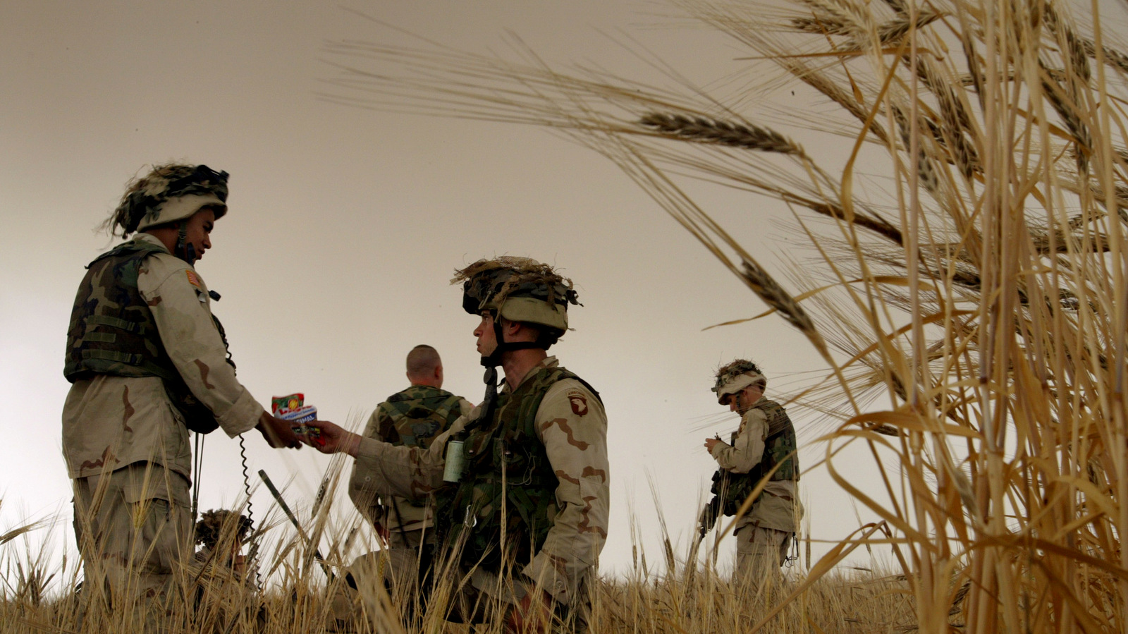 A U.S. Army soldier shares a bag of sunflower seeds with a fellow soldier, as they wait for a helicopter to pick them up in a field of barley nearly ready to harvest, outside Tall Ash Shawr, a village in northwestern Iraq, Monday, May 19, 2003. (AP/Brennan Linsley)