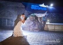 Atlantis Aquarium Wedding - 1000 Ideas