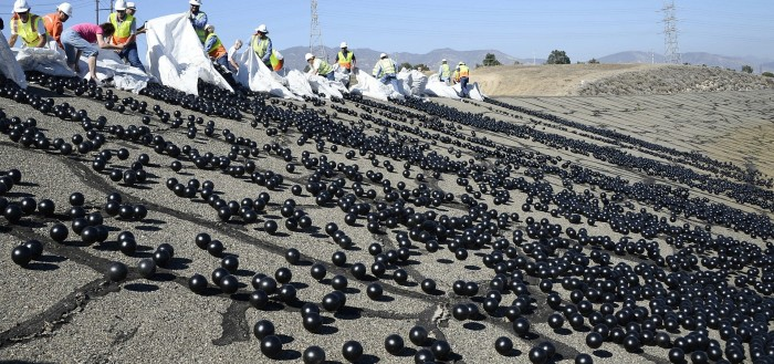 bolas-negras-plastico-lago-california-700x329