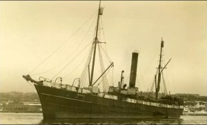 ss-newfoundland-sealing-vessel