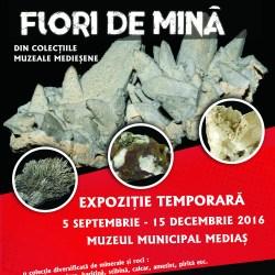 """Expozitia """"Flori de mina din colectiile muzealemediesene"""""""