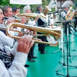 Festivalul Tarafuri si Fanfare, editia a XI-a