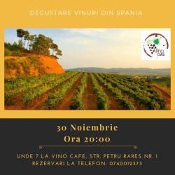 O seara de degustare cu vinuri din Spania