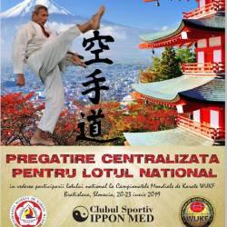 Lotul national de karate se pregateste la Medias