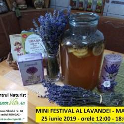 Mini Festival al Lavandei in Medias