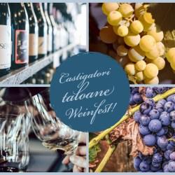 Afla castigatorii taloanelor de degustare la Weinfest 2019
