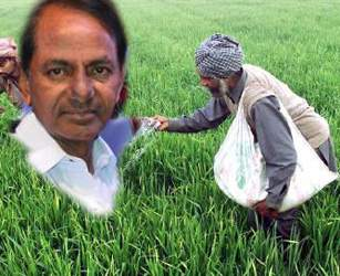 KCR Reverts Mandatory Farming In Telangana Leaving Choices To Farmers