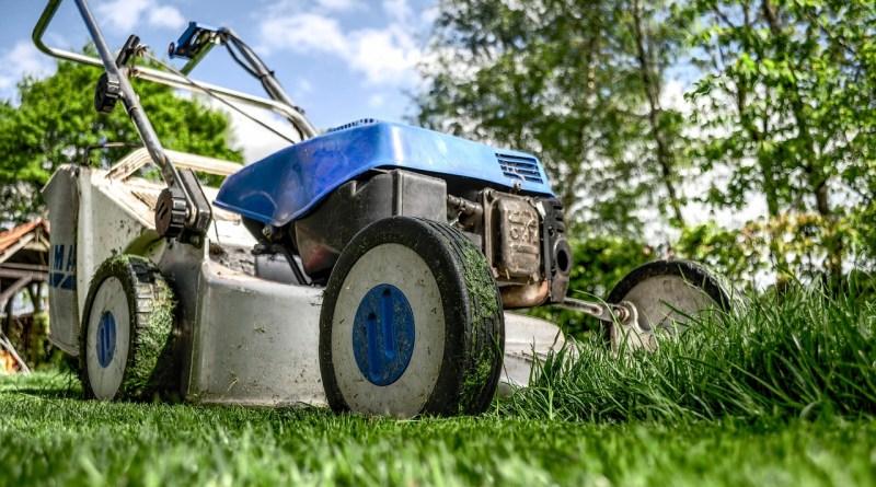 Když roztaje sníh, je čas na obnovu trávníku