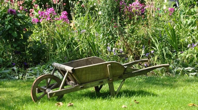 10 tipů, jak připravit zahradu na jaro