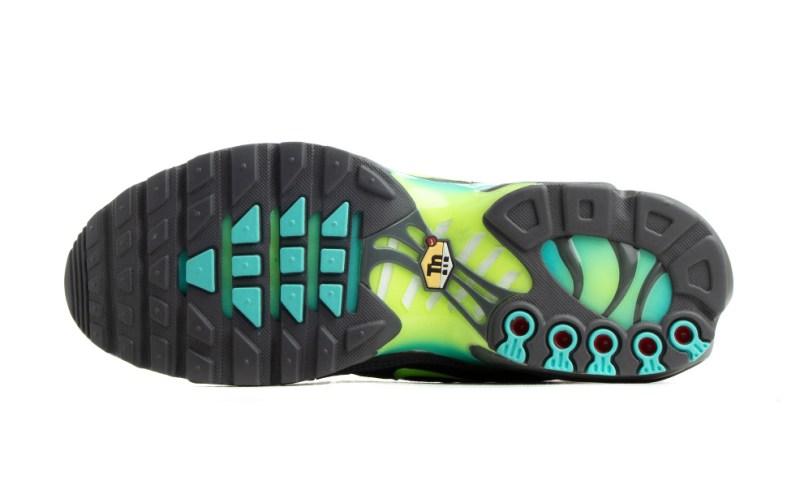 Tenisky Nike Air Max Plus Iron Grey CV1636-001
