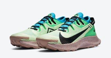 Tenisky Nike Pegasus Trail 2 CK4305-700