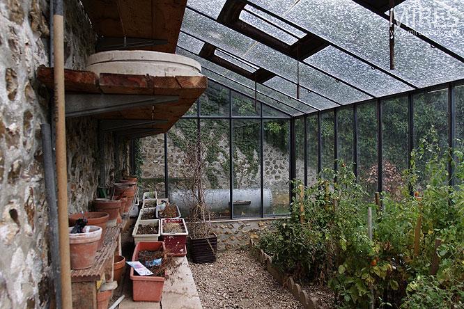 Petit jardin dhiver C0172  Mires Paris