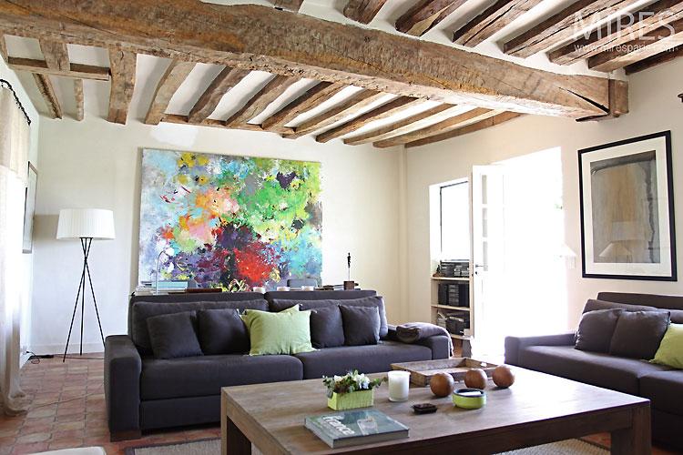 Salon Et Poutres Apparentes C0349 Mires Paris